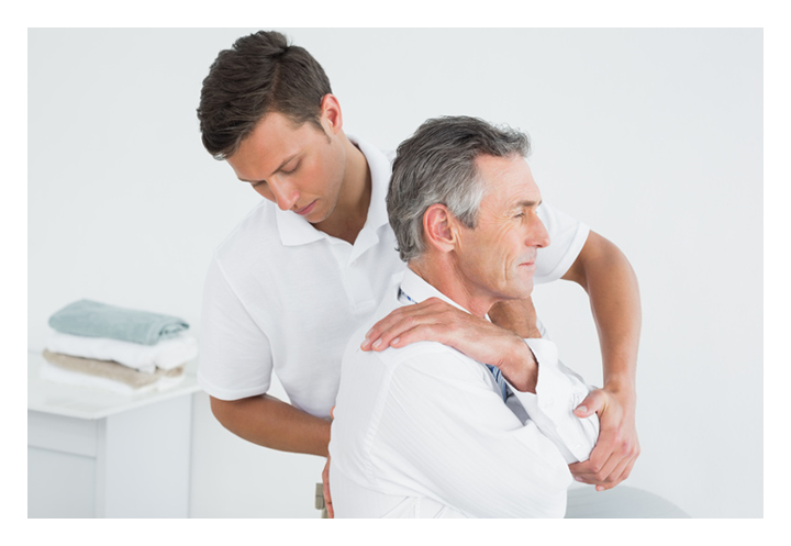 THE CHIROPRACTIC PROFESSION